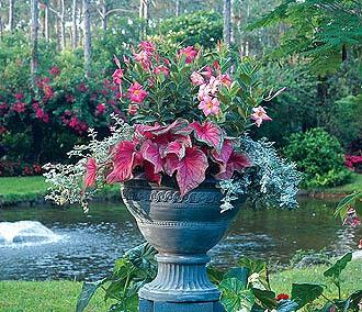 Цветы в вазе на дачном участке