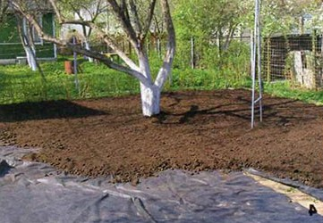 Перекопка почвы под посадку газона