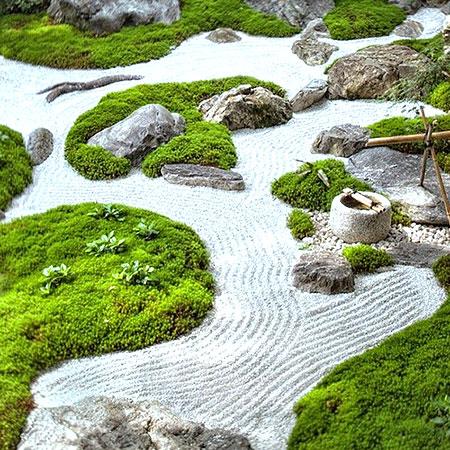Зелень и гравий в саду камней