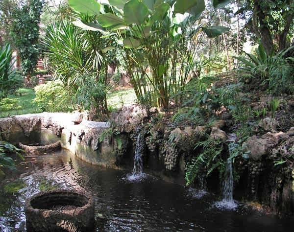 декоративный пруд фото