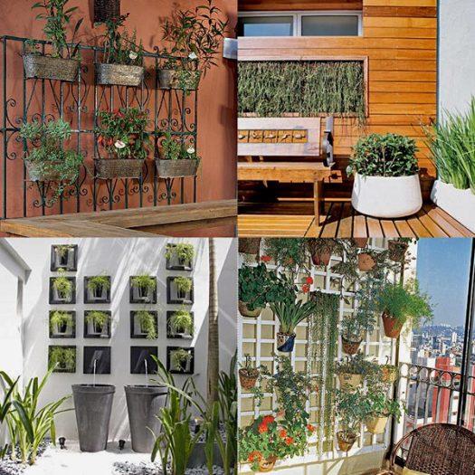 вертикальное озеленение стен 1