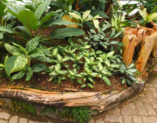 Декоративное ограждение из сухого дерева для клумбы