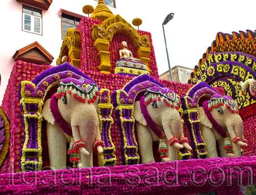 фестиваль цветов в таиланде (10)