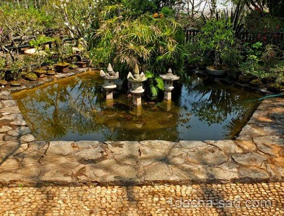 японский сад на даче фото (5)
