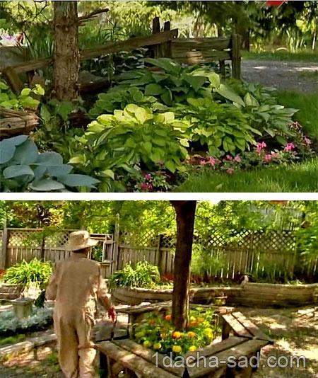 красивый сад видео
