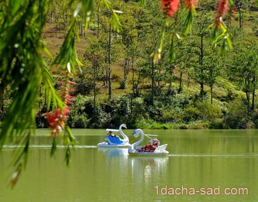 парк долина любви далат вьетнам (1)