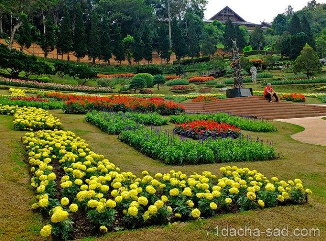 красивый сад Mae Fah Luang (5)