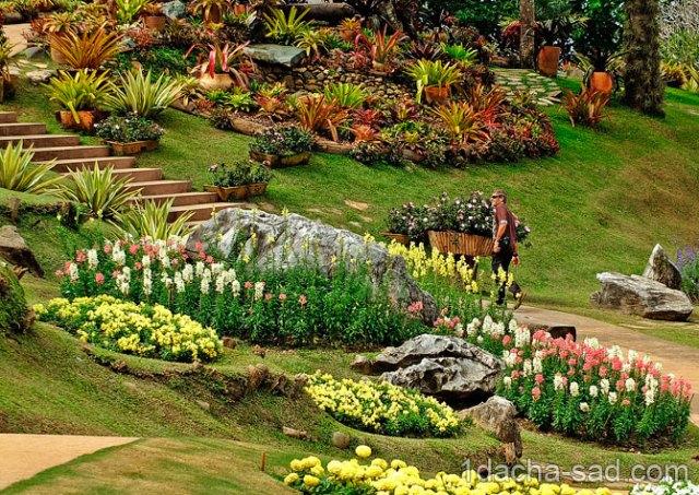 красивый сад Mae Fah Luang (4)