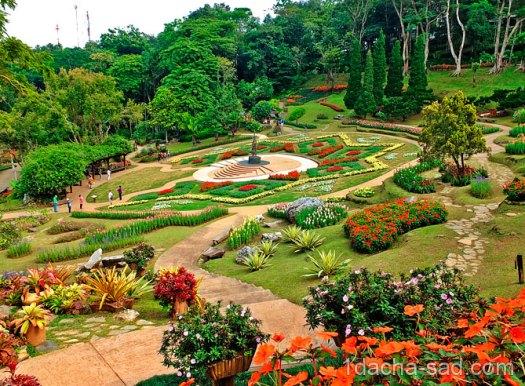 красивый сад Mae Fah Luang (3)