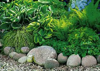 Альпийская горка - бордюр из круглого камня