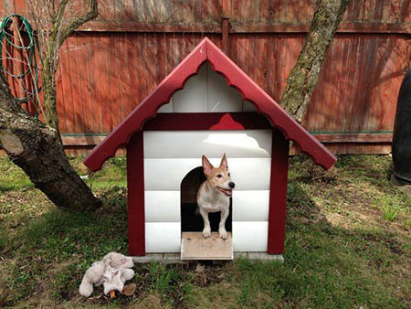 Добротная евро-будка для собаки