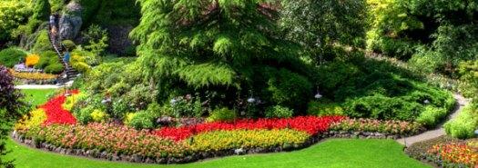 Экостиль в садовом дизайне