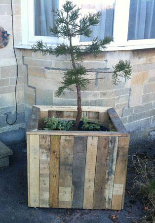 Ящик для дерева