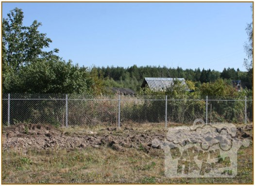 Забор из сетки рабицы на участке