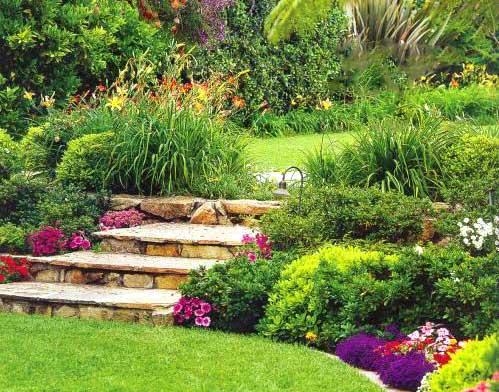 Фото красивых уголков сада