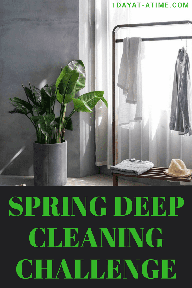 The deep cleaning challenge you must do this spring hello lovely deep cleaning challenge solutioingenieria Image collections