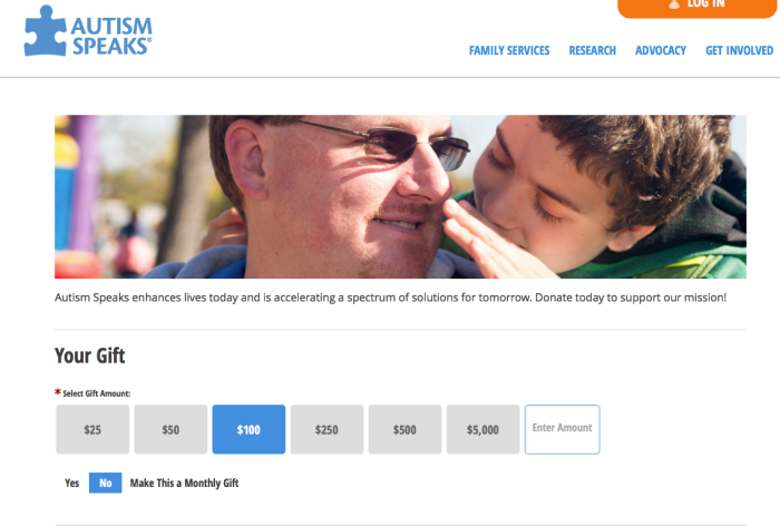 Online Donation Page Examples