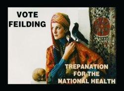 vote-feilding