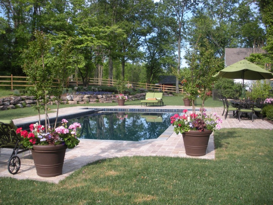 Dallas Flowers and Pools: Planting Around Your Swimming Pool on Patio Ideas Around Pool id=40067