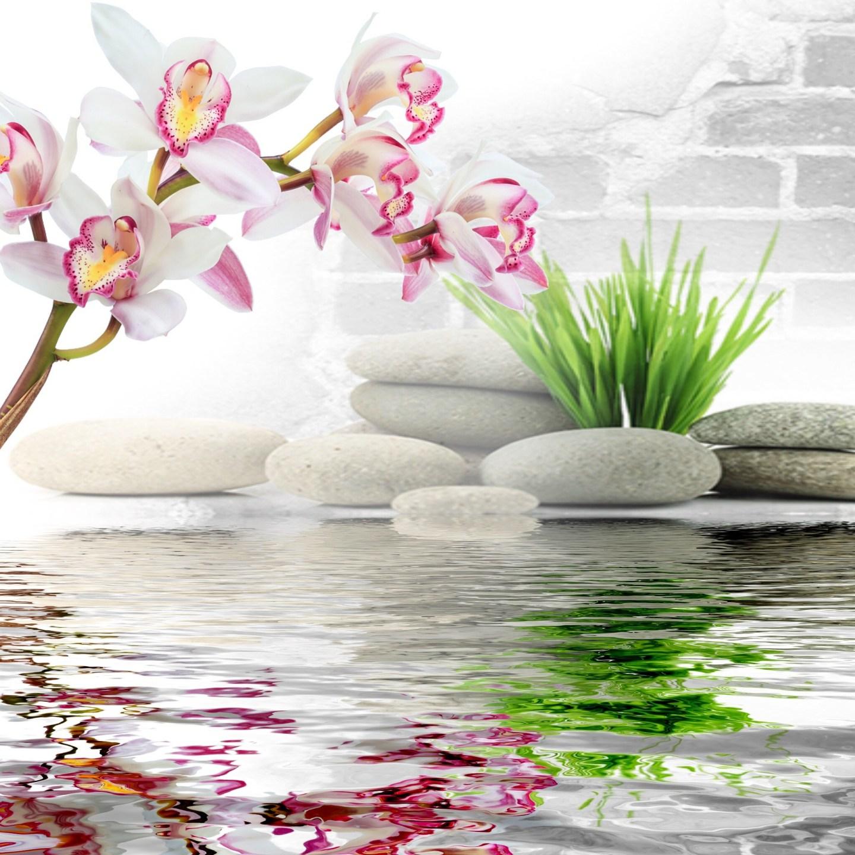 1fache Meditation in 7 Schritten