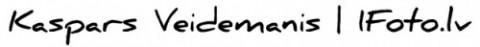 logo5-e1454309985770 logo