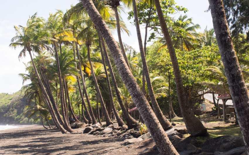 Grande Anse, trois rivières, guadeloupe, basse terre