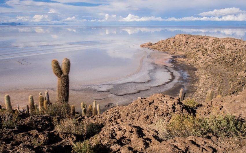 salar, uyuni, desert, sel, bolivie, isla incahuasi
