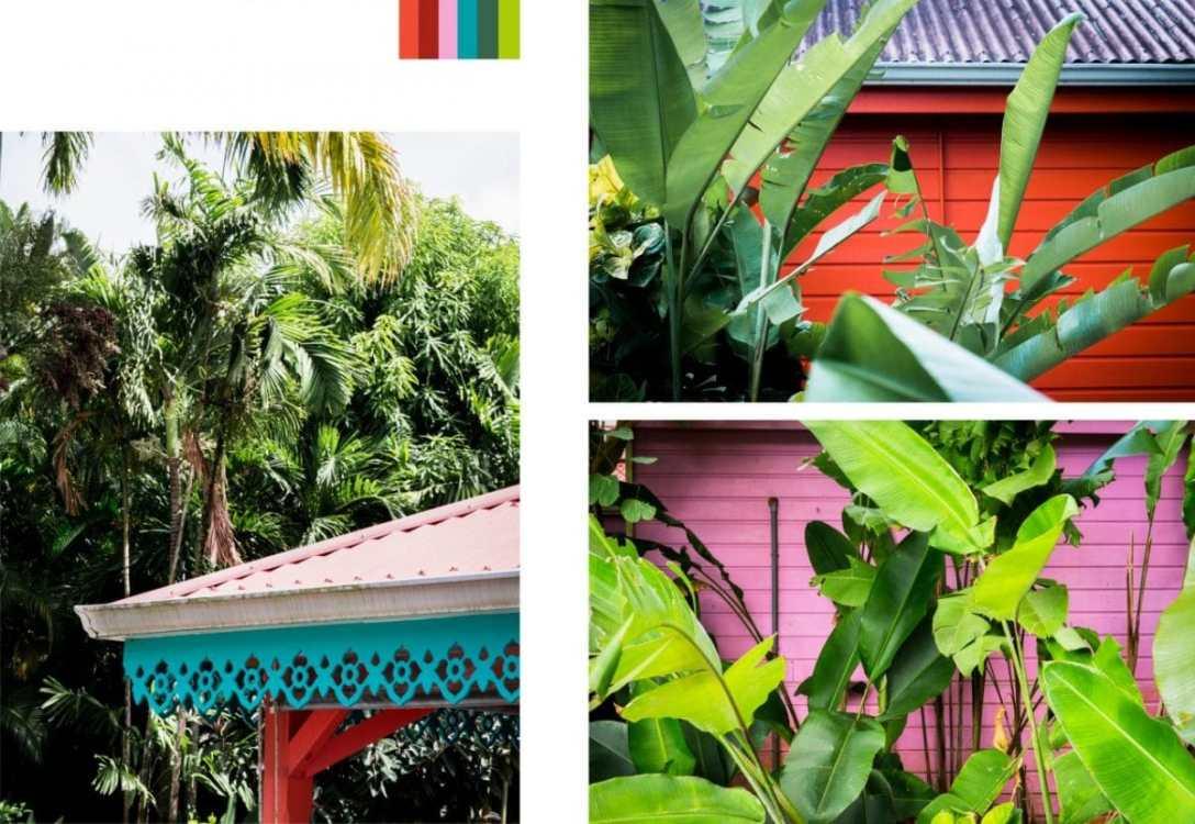 jardin botanique, fleur tropicale, guadeloupe, deshaies