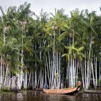 la Guyane, entre fleuve et rencontre Bushinenguée