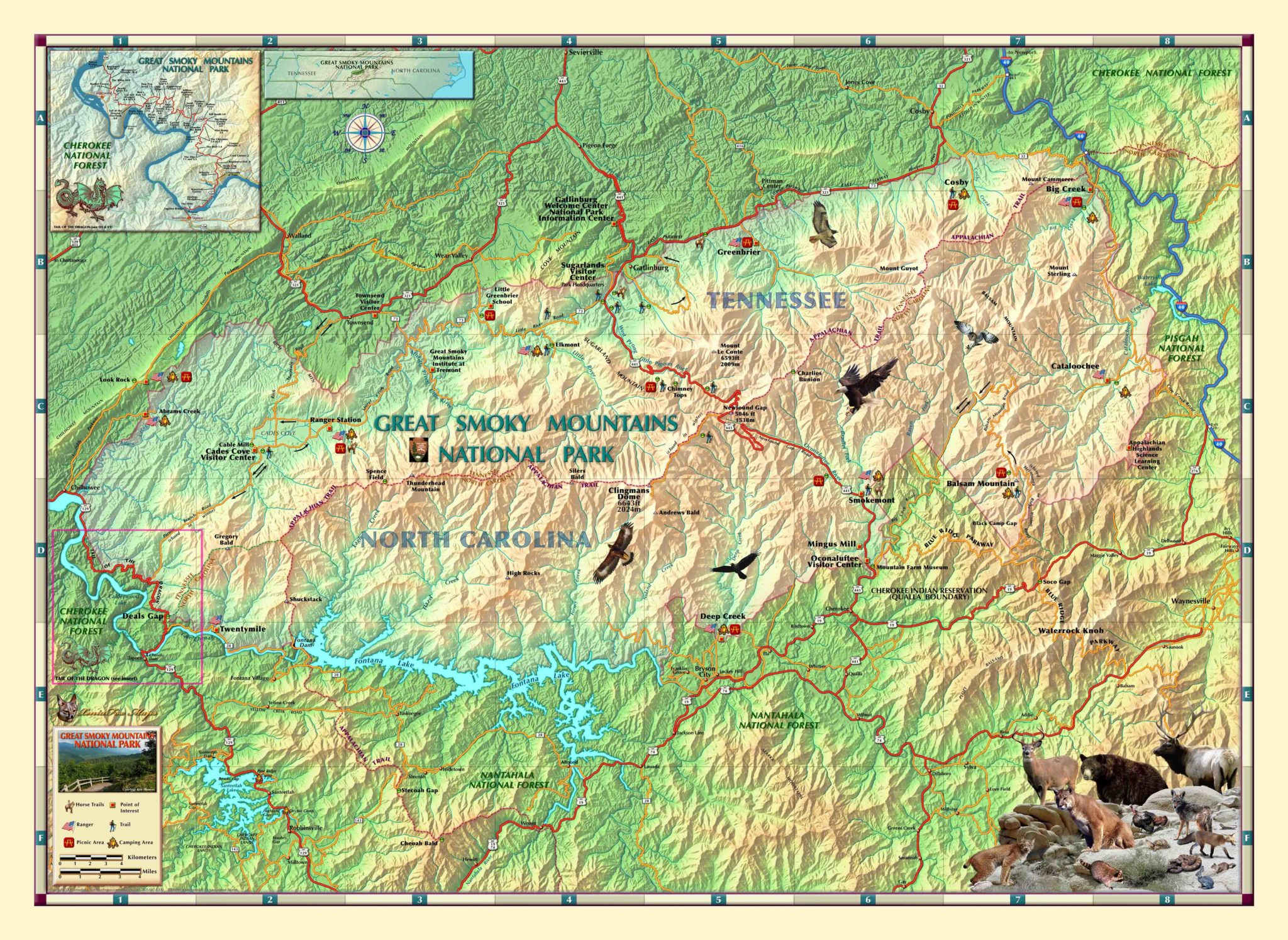 Smoky Mountains National Park Wall Map