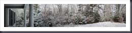 Morning snow 2-22-12