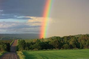 DRYER-ROAD-RAINBOW.jpg