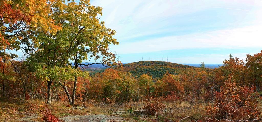North Uncanoonuc Foliage