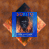 London-Irish tropical indie quintet Bokito release new single 'Love Gotten'