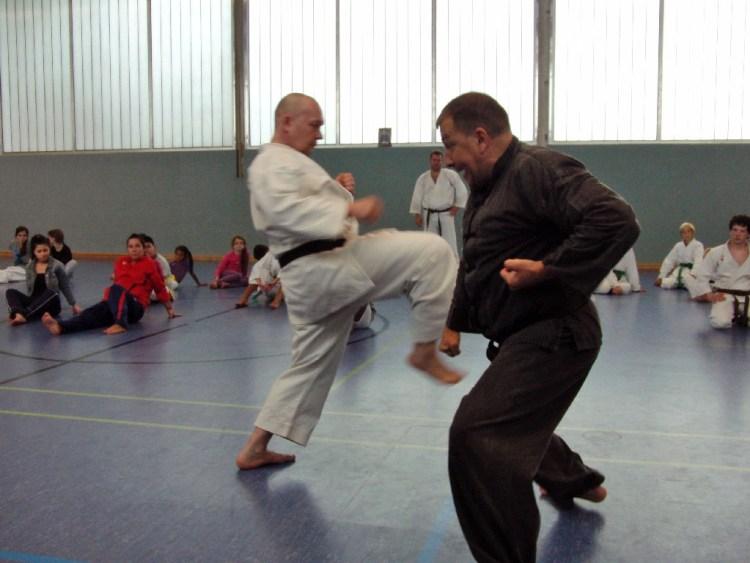 karatetrainingscamp-2012-6281