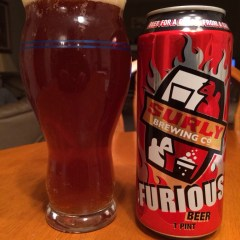 628. Surly Brewing Co. – Furious Beer