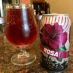 856. Revolution- Rosa Hibiscus Ale