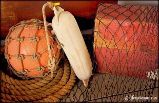 buoy net box