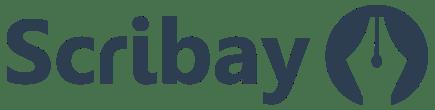 logo inverted 1 - Des outils géniaux pour écrire plus: L'offre Scribay premium
