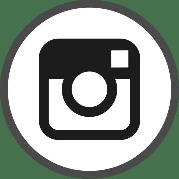 Icone instagram - 1 Noiseau à Paris - Graphiste illustratrice Webdesigner Val de Marne