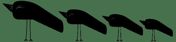 1Noiseau en famille - Réalisation 1N'oiseau à Paris - Graphiste illustratrice Val de Marne