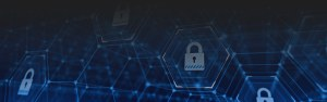 vulnerability management cyber security binghamton - vulnerability-management-cyber-security-binghamton