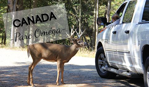 J10 Parc Oméga