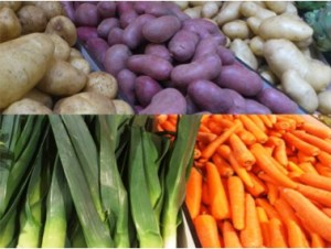 1 Picture 1 Word Winter Vegetables