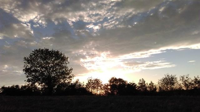 Sunset Running 1