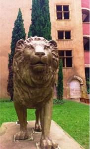 Lion Master