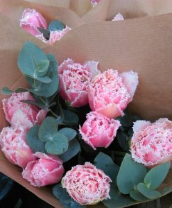 Chic RosesChic Roses