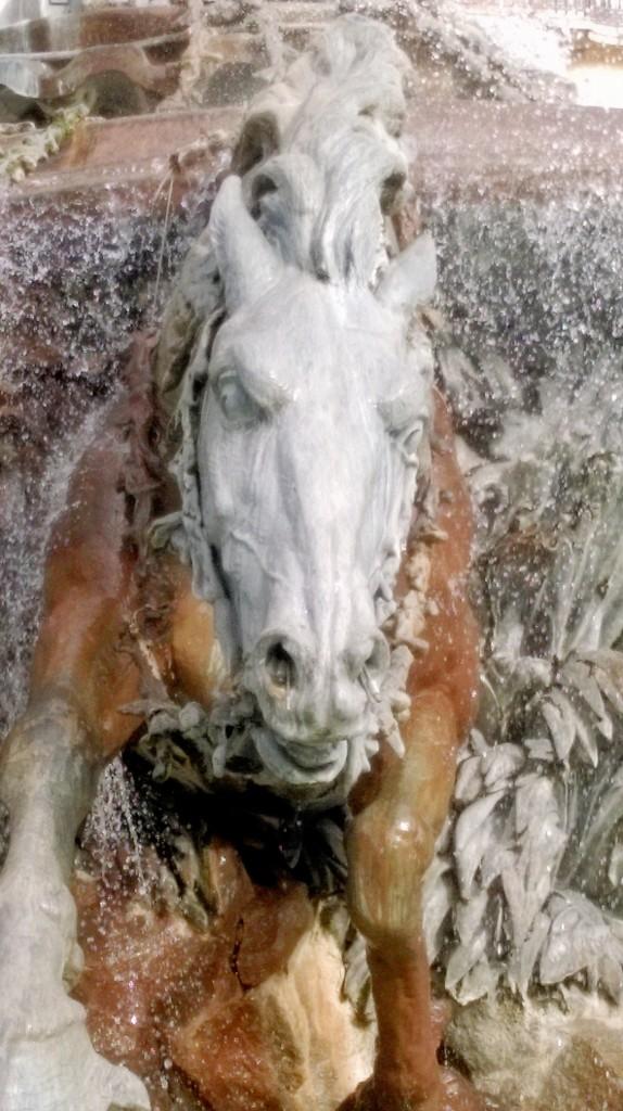 On Horseback