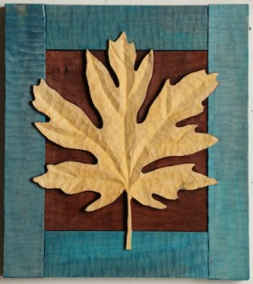 Big Leaf Maple 6