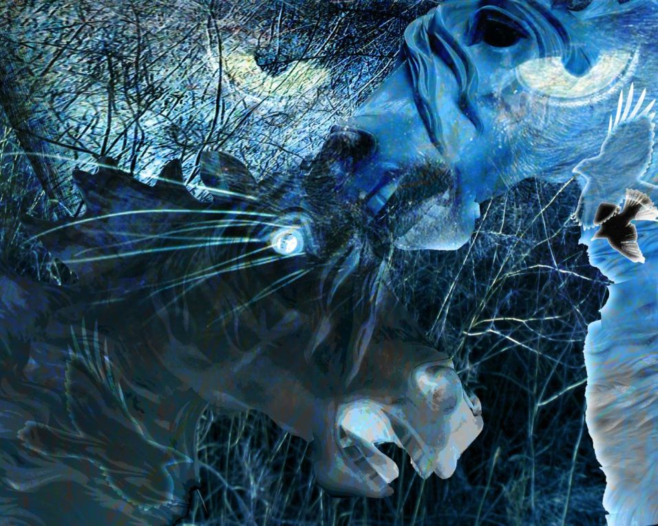 Night Riders by Maureen Shaughnessy